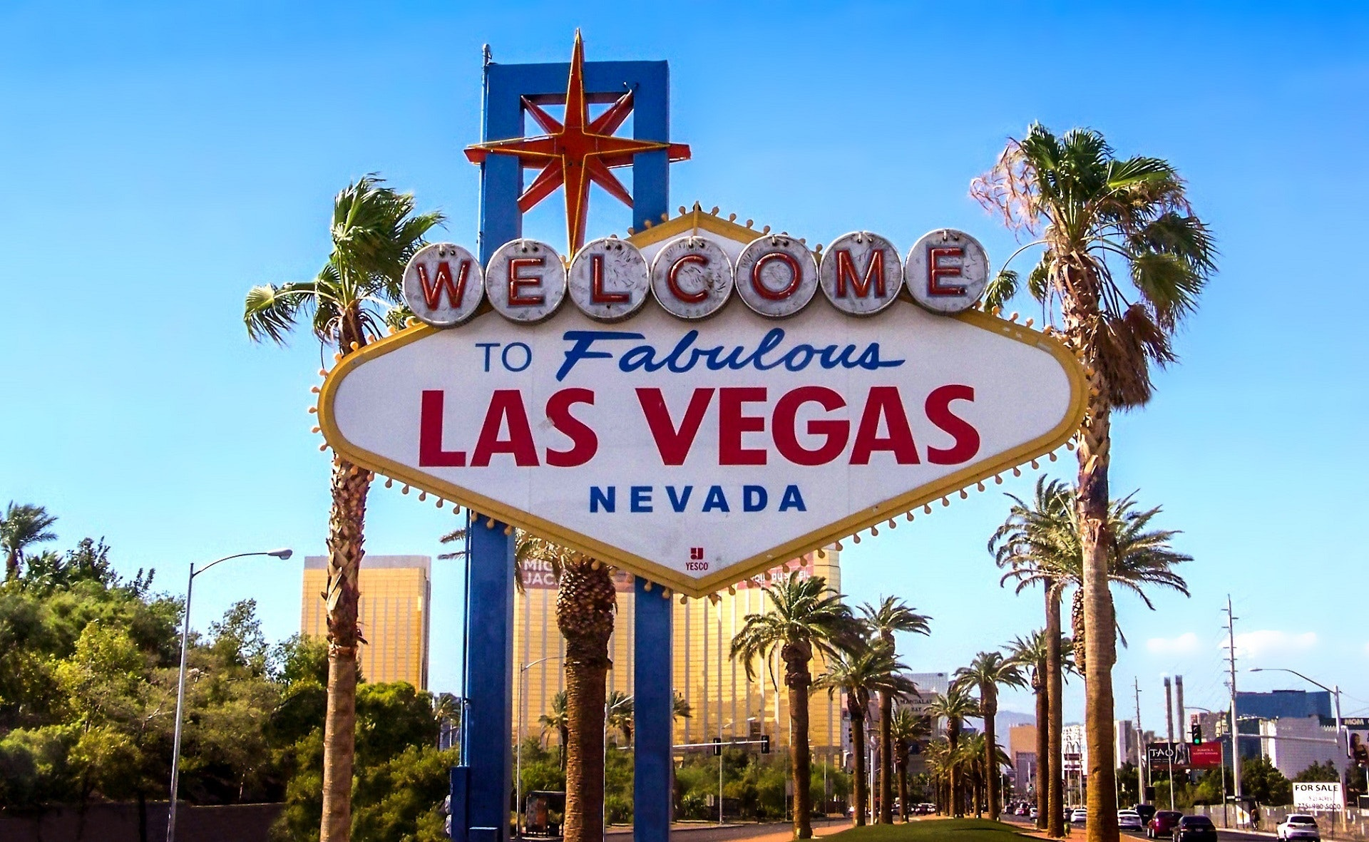 Places to Propose in Las Vegas