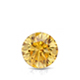 Certified 0.75 cttw Round Yellow Diamond Stud Earrings in 14k White Gold 4-Prong Basket (Yellow, SI1-SI2)