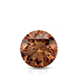 Certified 1.00 cttw Round Brown Diamond Stud Earrings in 14k White Gold 4-Prong Basket (Brown, SI1-SI2)