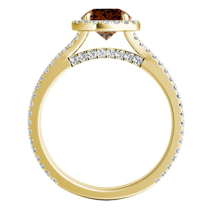 AUDREY  Halo  Brown  Diamond  Engagement  Ring  In  14K  Yellow  Gold  With  0.50  Carat  Round  Diamond